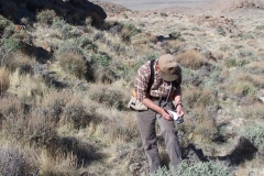 2007 Ernie Perkins Pigeon Mountain