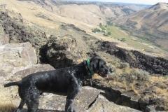 ranger valley